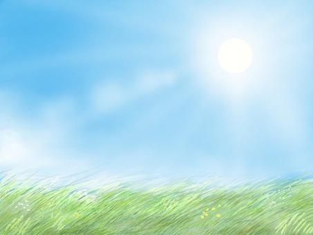 Morning Misty Prairie (Asahi Version)