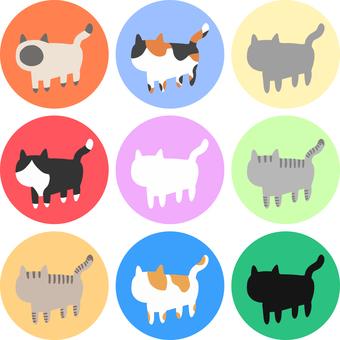 Feline cat set ①