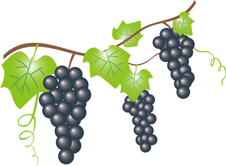 Grape (dark blue)