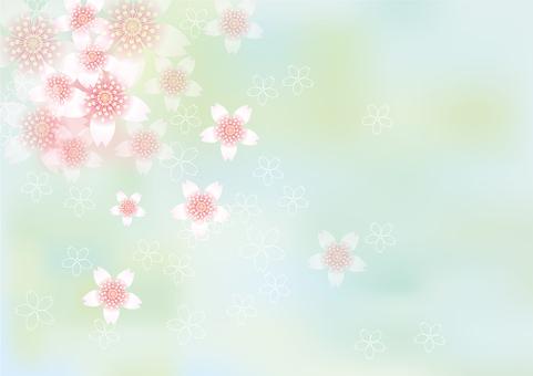 벚꽃의 꽃 117