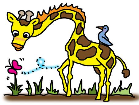 Giraffe and butterfly