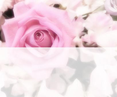Flower message card 4-B