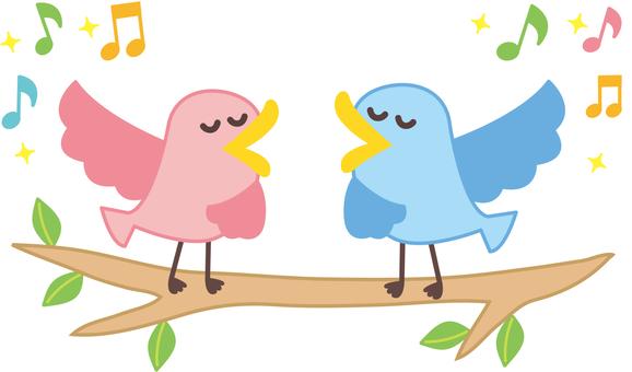 Bird's illustrations that sing songs