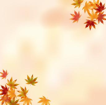 Autumn leaves 70