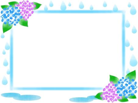 Rain and hydrangea 2