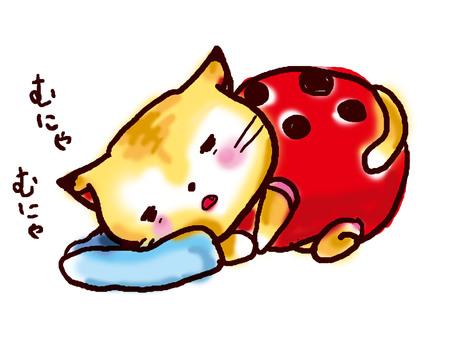 Otome cat