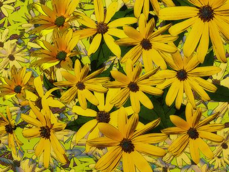 Flower of Jerusalem artichoke