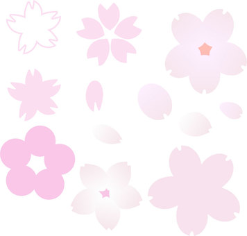 Cherry blossoms of various shapes