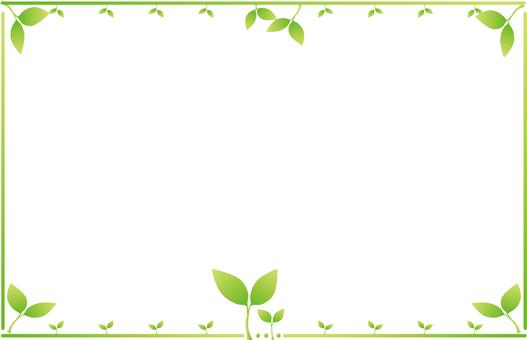 새잎의 테두리