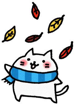 낙엽 고양이
