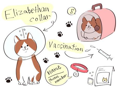 Cat Elizabeth color
