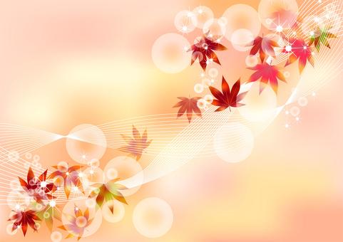 Fall pattern Maple 4