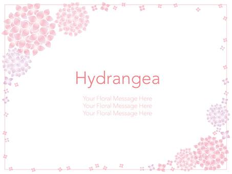 Hydrangea's frame 2
