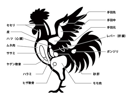 鶏肉 チキン 部位