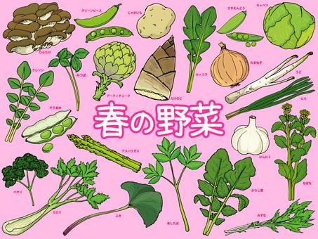 Spring vegetables / spring cups