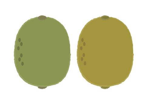 kiwi fruit_ kiwifruit 1