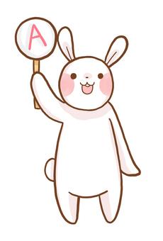 답변 토끼