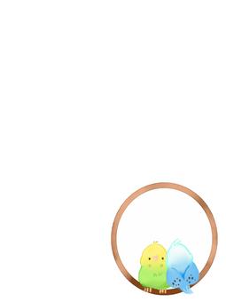 잉꼬 2 마리 (흰색)