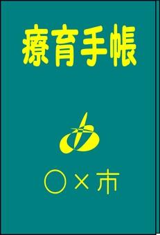 Care book