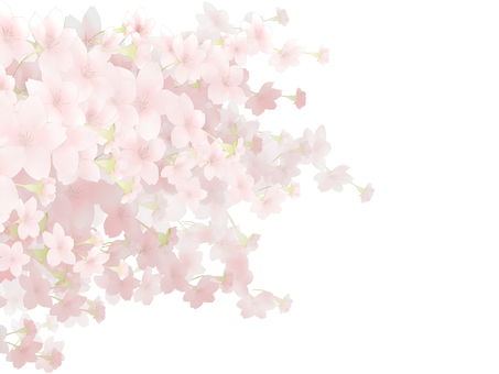 Cherry background left