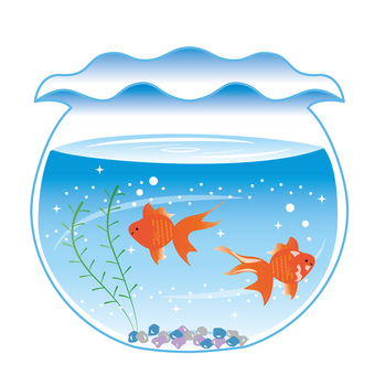 Fishbowl Goldfish Illustration