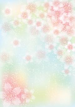 벚꽃의 꽃 150