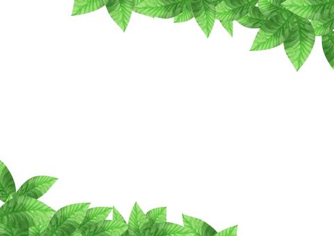 水彩 葉 斜めフレーム
