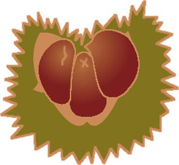 Chestnut -3