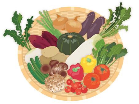 蔬菜_扎魯