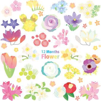 Flower Assembly 01
