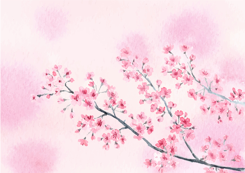 Sakura watercolor blur A4 size