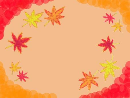 Maple (background)