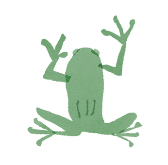 Frog seen from above