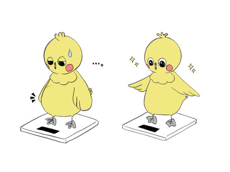 Chick on a scale