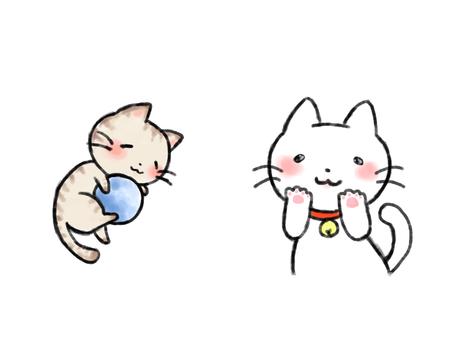 고양이 흰색 배경