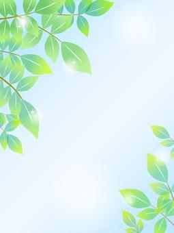 70402, New green frame vertical, background sky