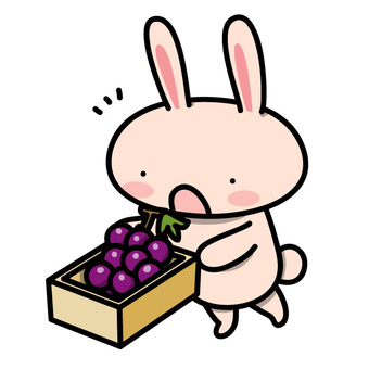 A rabbit who receives a gift (grape ver.)