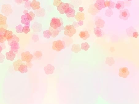 梅花背景2