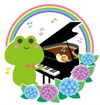 梅雨のかえるのピアノコンサート