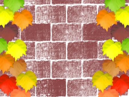 Ivy ivy brick