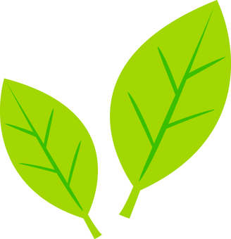 Fresh green (leaf)