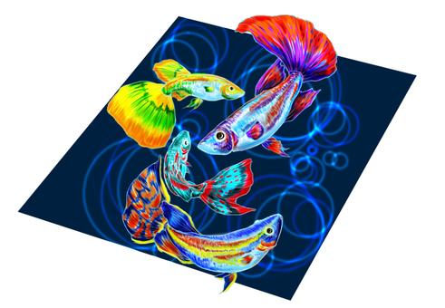 Tropical fish A