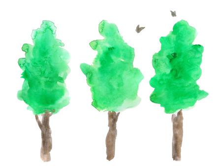 Three trees and birds