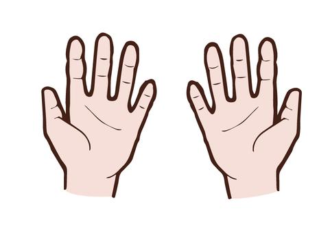 人體/手(向內)顏色