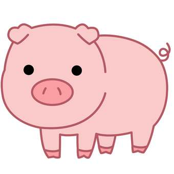 Animal Illustrations-Pig