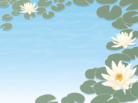 Water lily pond frame