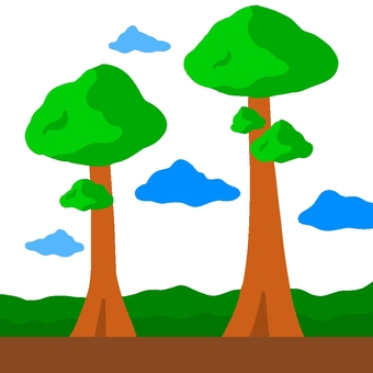 Tropical forest trees