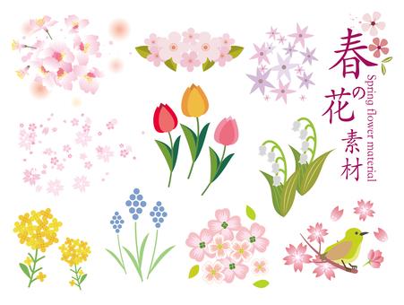 봄 꽃 소재