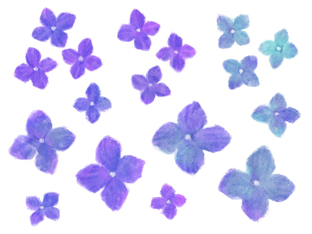 Small flower _ hydrangea (blue)