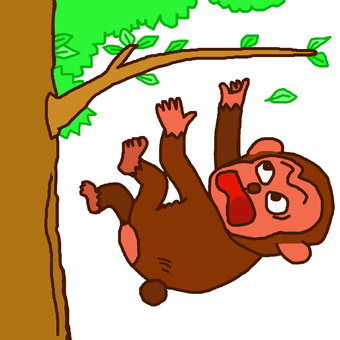 The monkey also falls from the tree